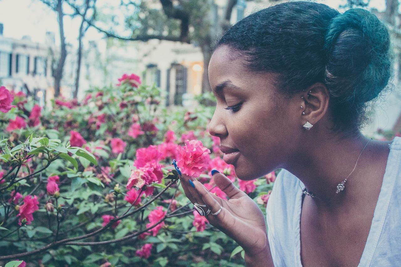 Visite détente pour l'été 2021 : le jardin de Claude Monet à Giverny